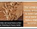 Screenshot_2020-06-15 kapur-termites_480x JPG (WEBP Image, 399 × 245 pixels)